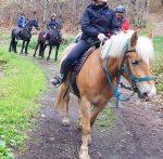 Concluso il 2° Modulo Corso Accompagnatore Equestre